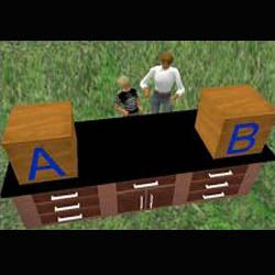 Bringing Second Life To Life: Researchers Create Character With Reasoning Abilities of a Child
